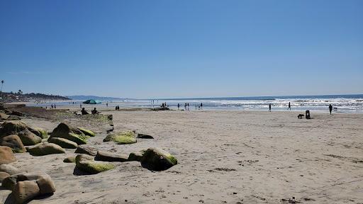 Del Mar Dog Friendly Beach