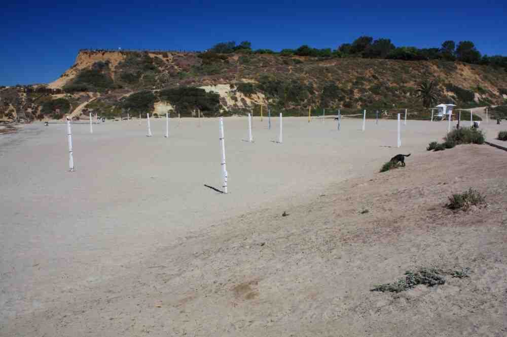 What time does the Del Mar Dog Beach close?